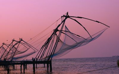 Chinese Fishing Nets Kochi India