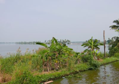 View over lake Allepey backwaters Kerala India