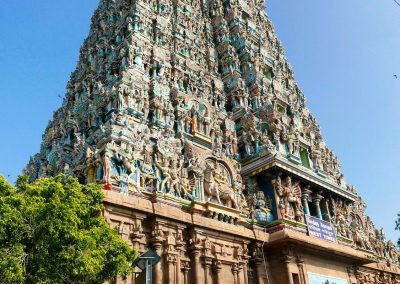Madurai Menakshi Temple Way to Dharsan