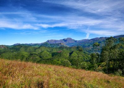 Munnar Distant Western Ghat mountains