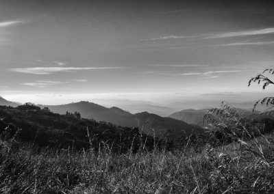 Munnar Mountains in the mist bw