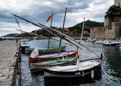 Anchovy boats Collioure